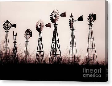 Texas Windmills Canvas Print by Tamyra Ayles