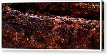 Texture Of The Sea Canvas Print by Ronald Talley