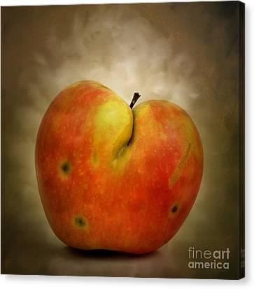 Textured Apple Canvas Print