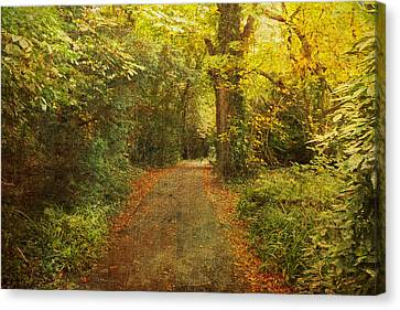 Textured Trees Canvas Print