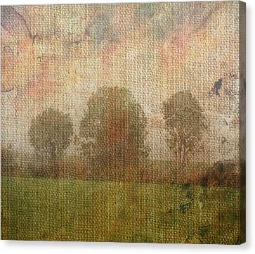 Textured Trees Canvas Print by Roni Chastain