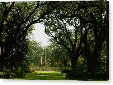 Tezcuco Plantation Grounds Canvas Print by Helen Haw