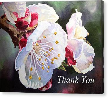 Thank You Card Apricot Blossom Canvas Print by Irina Sztukowski