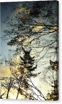 Thaw Canvas Print by Dean Harte
