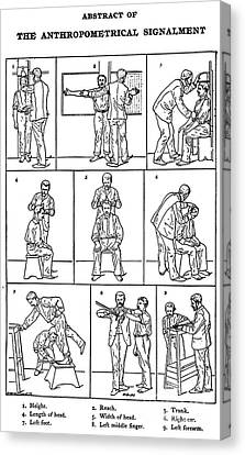The Anthropometrical Signalment, 1896 Canvas Print by Science Source