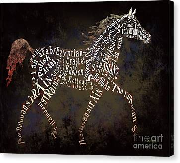 The Arabian Horse In Typography Canvas Print by Ginny Luttrell
