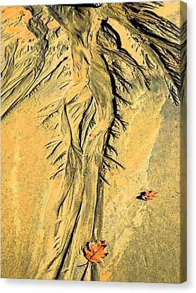 The Art Of Beach Sand Canvas Print by Marcia Lee Jones