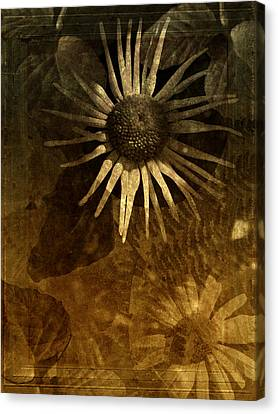 The Awakening Canvas Print by Bonnie Bruno