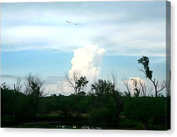 Canvas Print featuring the photograph The Back Forty by Lon Casler Bixby