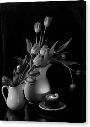 The Beauty Of Tulips In Black And White Canvas Print by Sherry Hallemeier