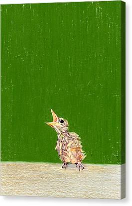 The Birdie Canvas Print by Albert Notarbartolo
