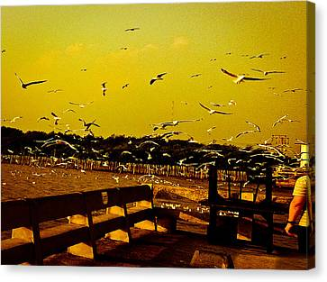 The Birds Scene Canvas Print