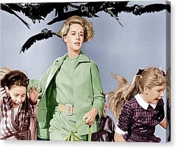 The Birds, Tippi Hedren Center, 1963 Canvas Print by Everett