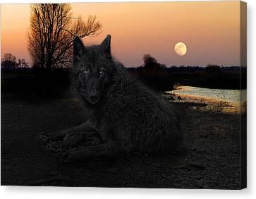 The Black Lone Wolf Canvas Print by Joachim G Pinkawa