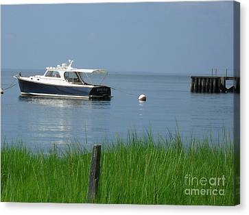 The Boat Canvas Print by Beth Saffer