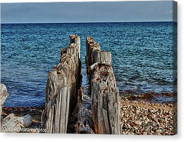 Canvas Print featuring the photograph The Bones Of Superior by Rachel Cohen