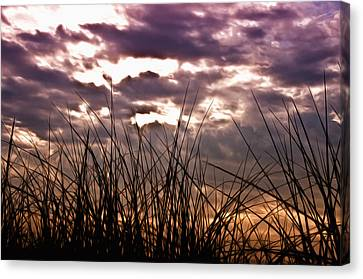 The Brewing Storm Canvas Print by Bill Cannon