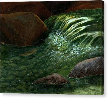 The Brookie Canvas Print by Jo Appleby