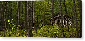 Smokey Mountains Canvas Print - The Cabin by Ryan Heffron