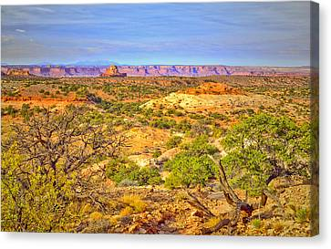 The Canyon In The Distance Canvas Print