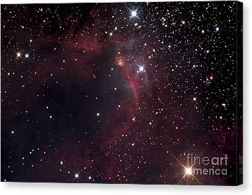 155 Canvas Print - The Cave Nebula by Robert Gendler