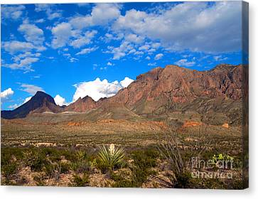 The Chisos Mountains Big Bend Texas Canvas Print by Gregory G Dimijian MD