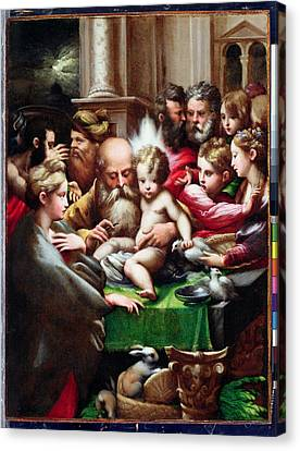The Circumcision Canvas Print by Francesco Mazzola Parmigianino
