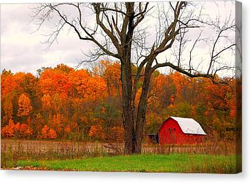 The Colors Of Fall Canvas Print by Robin Pross
