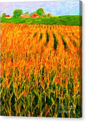 The Cornfield Canvas Print by Wingsdomain Art and Photography