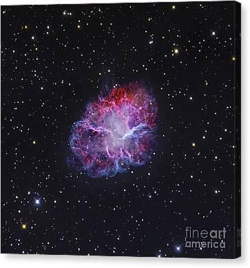 The Crab Nebula Canvas Print by Robert Gendler