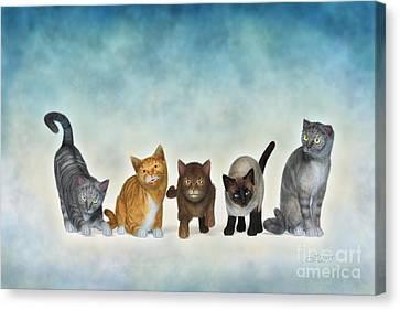The Cute Ones Canvas Print by Jutta Maria Pusl