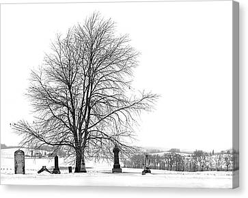 The Dead Of Winter Canvas Print by Jak of Arts Photography