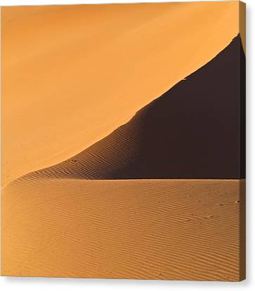 The Desert In Nambia, Africa Canvas Print