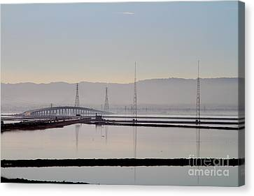 The Dumbarton Bridge In The Bay Area Viewed Through Coyote Hills California . 7d10961 Canvas Print by Wingsdomain Art and Photography