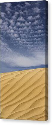 The Dunes 2 Canvas Print by Mike McGlothlen