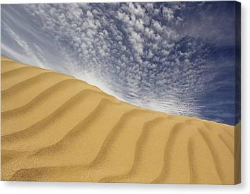 The Dunes Canvas Print by Mike McGlothlen