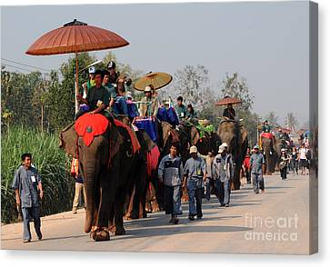 The Elephant Parade Canvas Print by Vivian Christopher