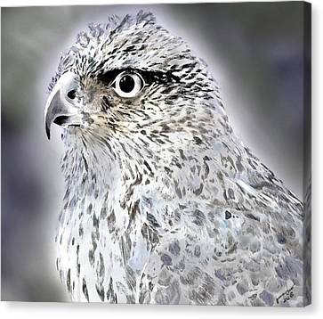 The Eye Of An Eagle  Canvas Print by Yvonne Scott