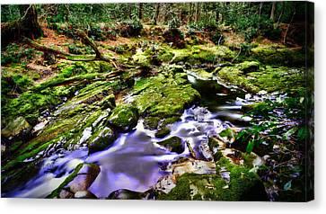 The Fairy Brook Canvas Print by Kim Shatwell-Irishphotographer