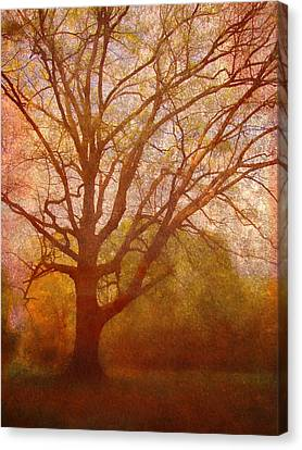 The Fairy Tree Canvas Print