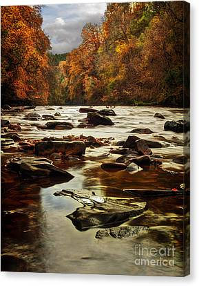 Autumn Leaf On Water Canvas Print - The Fall On The River Avon  by John Farnan
