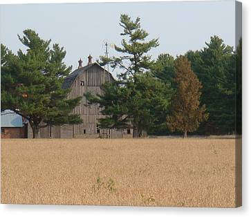 Canvas Print featuring the photograph The Farm by Bonfire Photography
