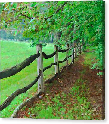 The Fence Path Canvas Print