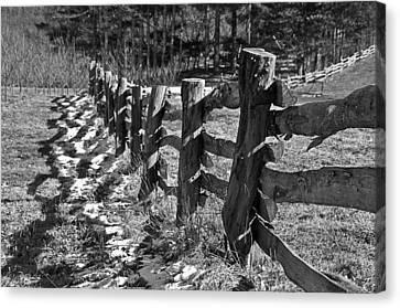 The Fence Canvas Print by Susan Leggett