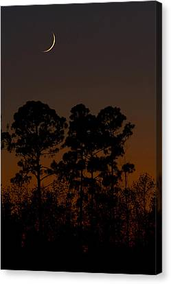 Canvas Print featuring the photograph The Fingernail Moon by Dan Wells