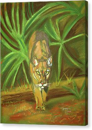 The Florida Panther  Canvas Print by John Keaton