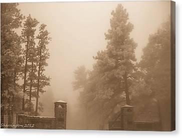 Canvas Print featuring the photograph The Fog by Shannon Harrington