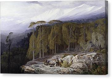 The Forest Of Valdoniello - Corsica Canvas Print by Edward Lear