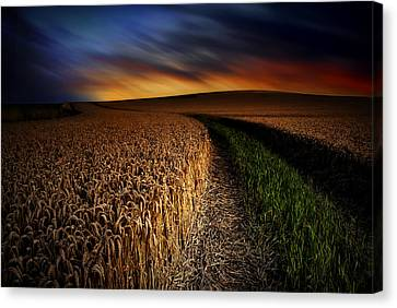 Canvas Print featuring the photograph The Forgotten Path by John Chivers