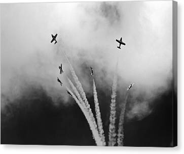 Canvas Print featuring the photograph The Freedom Of The Sky by Nick Mares